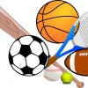 日本においてのスポーツ・ガバナンス:監督による暴力と不正行為に終止符を打つため